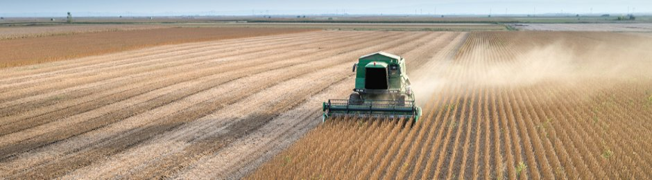 Tractor harvesting soybeans in a field