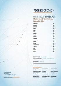 Middle East & North Africa Macroeconomic Forecast