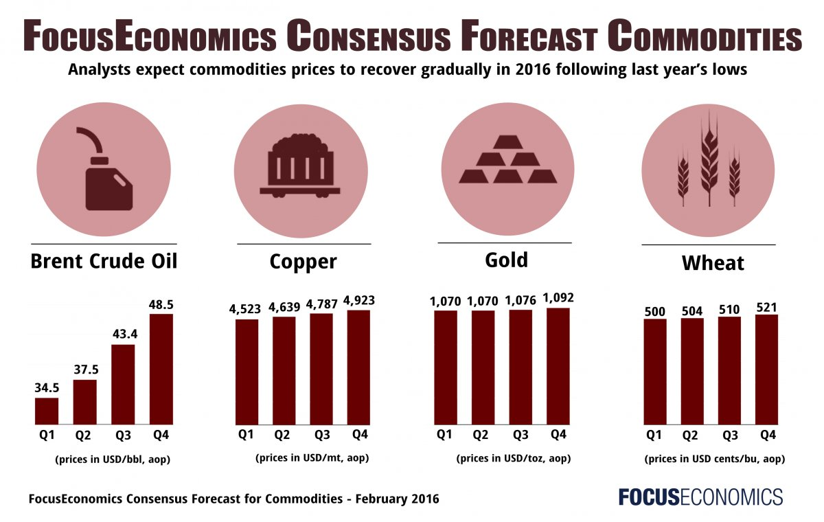 focuseconomics_commodities_february2016.jpg