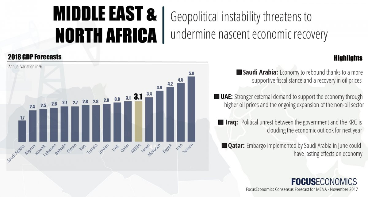 middle east and north africa business report